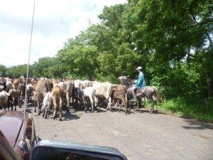 Nicaragua traffic jam
